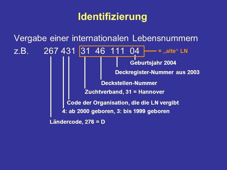 Identifizierung Vergabe einer internationalen Lebensnummern