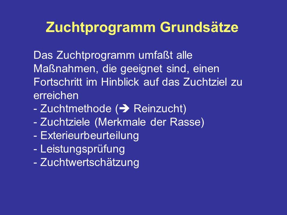 Zuchtprogramm Grundsätze