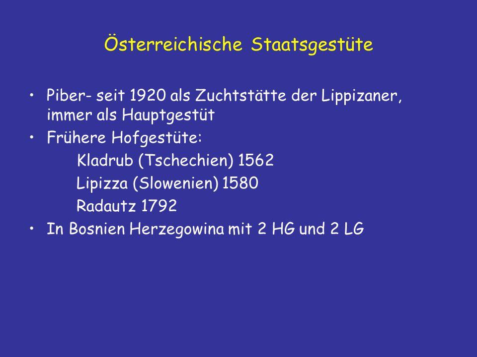 Österreichische Staatsgestüte