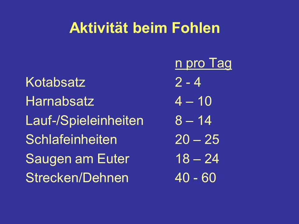 Aktivität beim Fohlen n pro Tag Kotabsatz 2 - 4 Harnabsatz 4 – 10