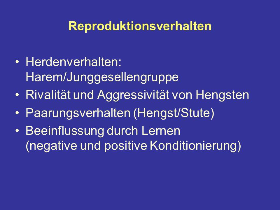 Reproduktionsverhalten