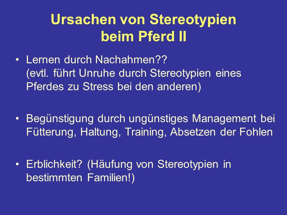 Ursachen von Stereotypien beim Pferd II