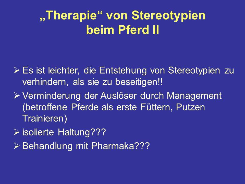 """""""Therapie von Stereotypien beim Pferd II"""