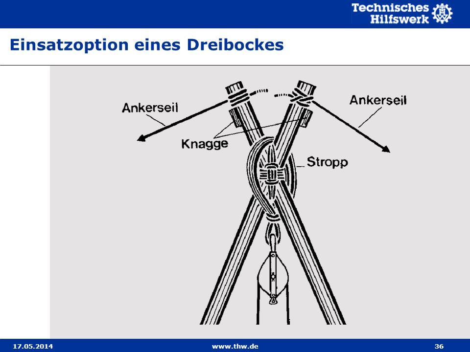 Einsatzoption eines Dreibockes