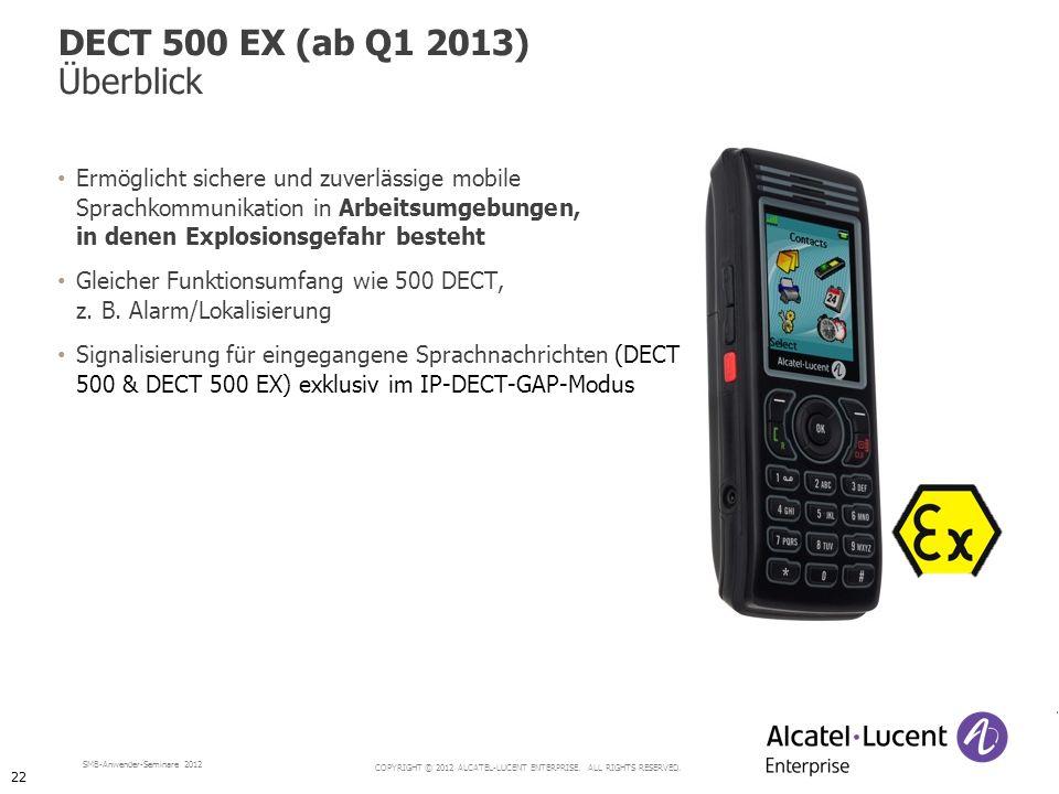 DECT 500 EX (ab Q1 2013) Überblick