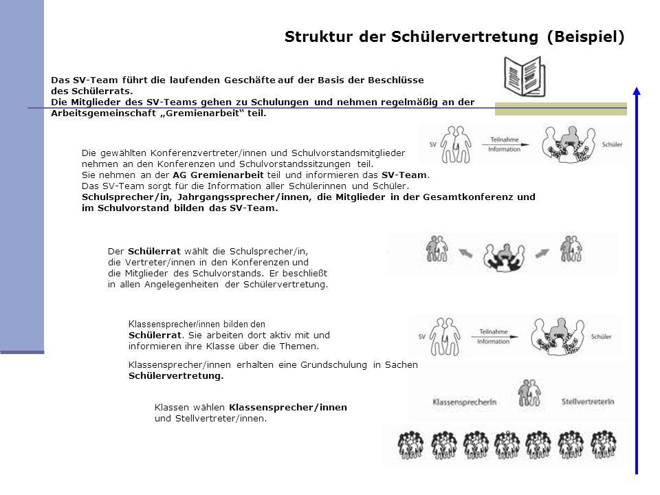 Struktur der Schülervertretung (Beispiel)
