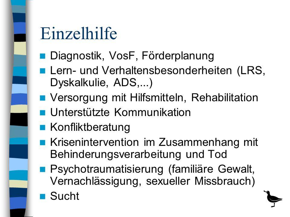 Einzelhilfe Diagnostik, VosF, Förderplanung
