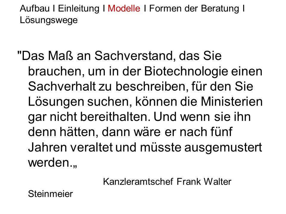 Kanzleramtschef Frank Walter Steinmeier