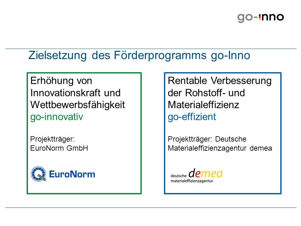 Zielsetzung des Förderprogramms go-Inno