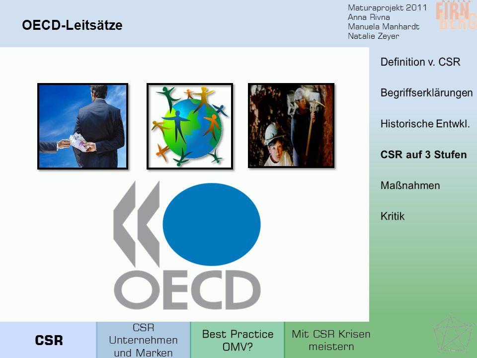 OECD-Leitsätze CSR Definition v. CSR Begriffserklärungen
