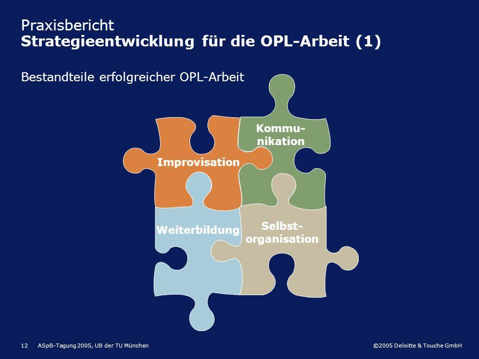 Praxisbericht Strategieentwicklung für die OPL-Arbeit (1)
