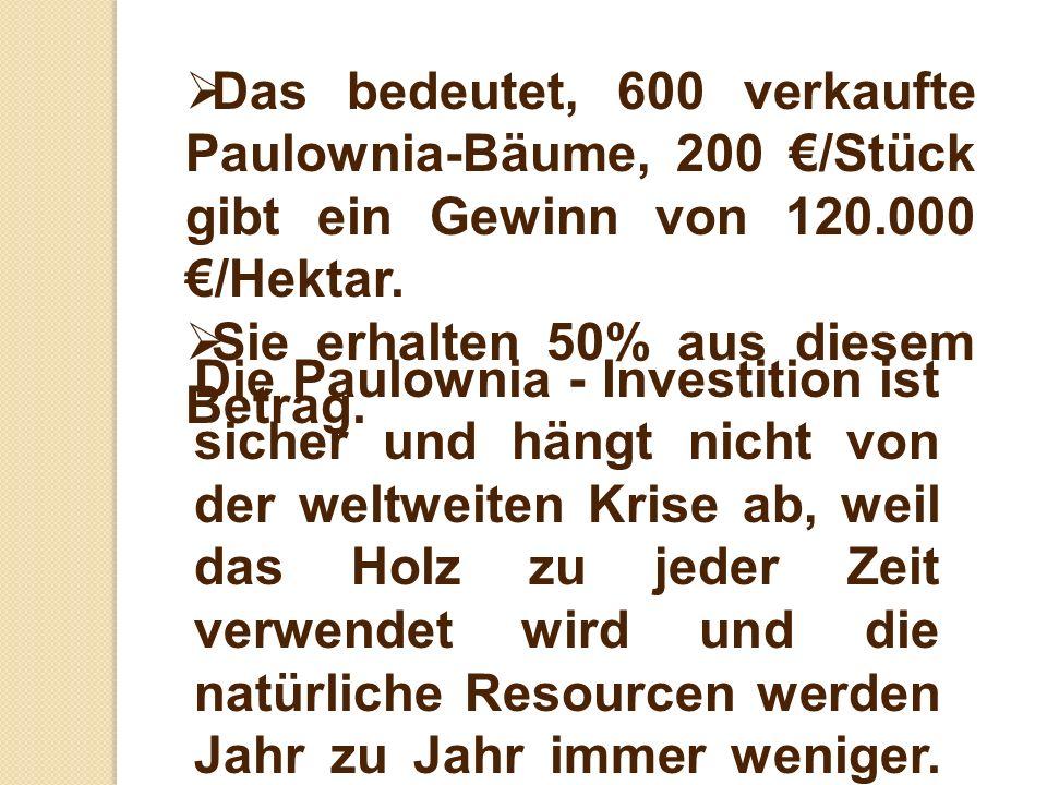 Das bedeutet, 600 verkaufte Paulownia-Bäume, 200 €/Stück gibt ein Gewinn von 120.000 €/Hektar.