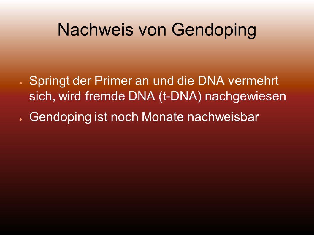 Nachweis von Gendoping