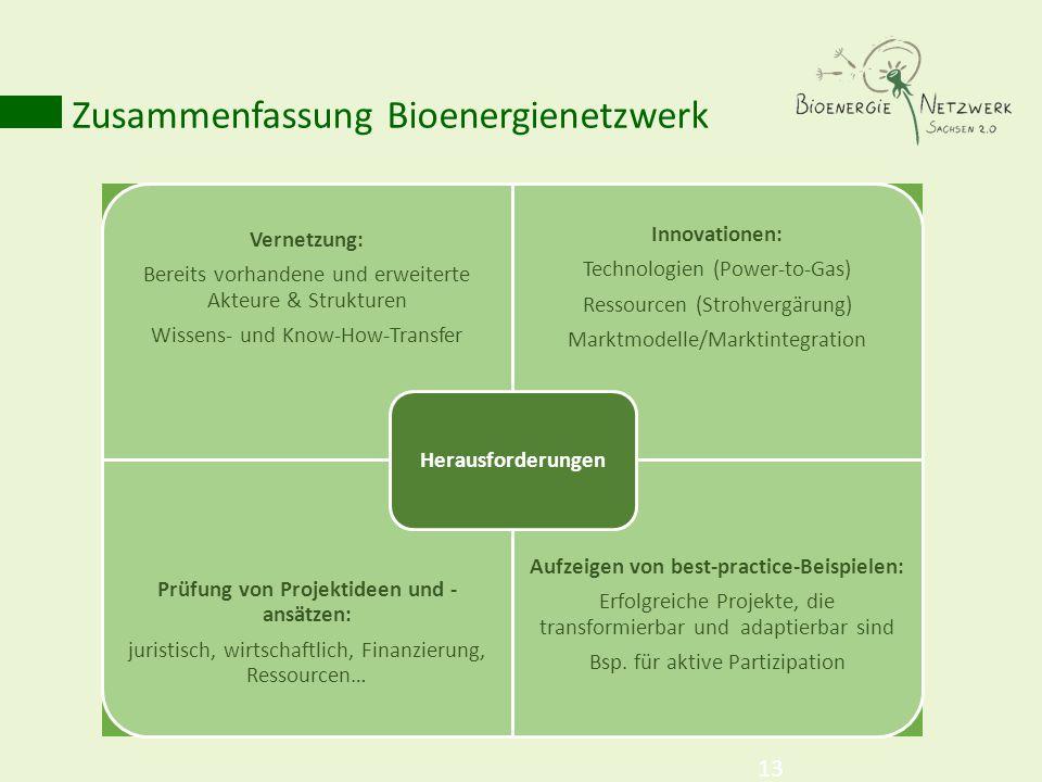 Zusammenfassung Bioenergienetzwerk