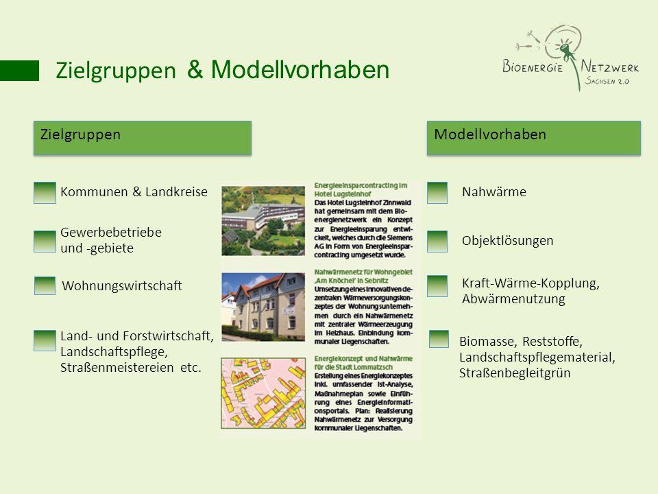 Zielgruppen & Modellvorhaben