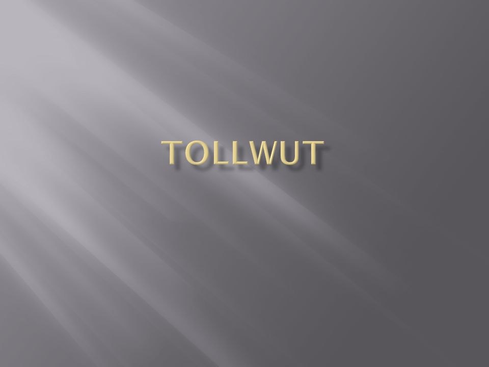 Tollwut