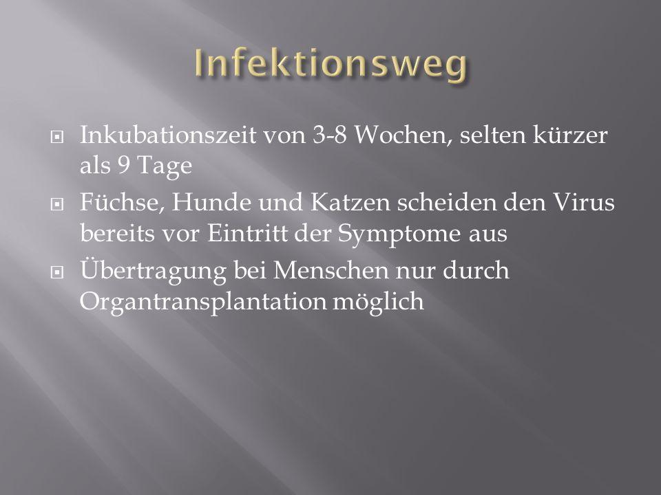 Infektionsweg Inkubationszeit von 3-8 Wochen, selten kürzer als 9 Tage