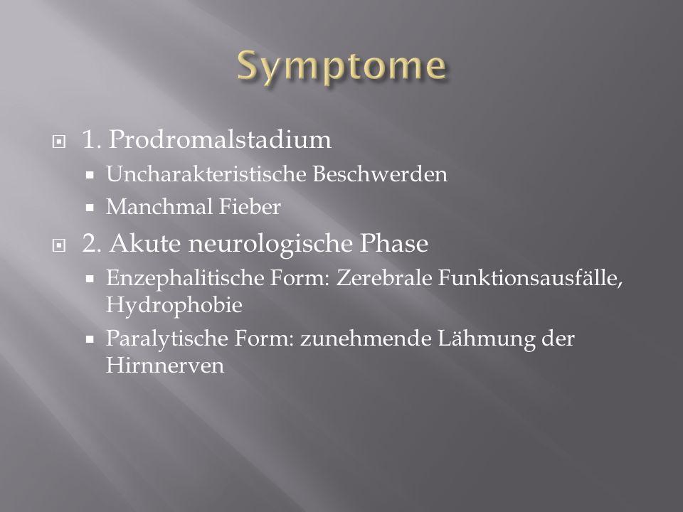Symptome 1. Prodromalstadium 2. Akute neurologische Phase