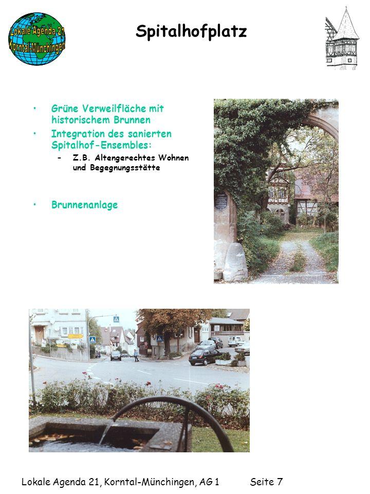 Spitalhofplatz Grüne Verweilfläche mit historischem Brunnen