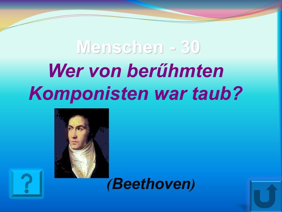 Wer von berűhmten Komponisten war taub
