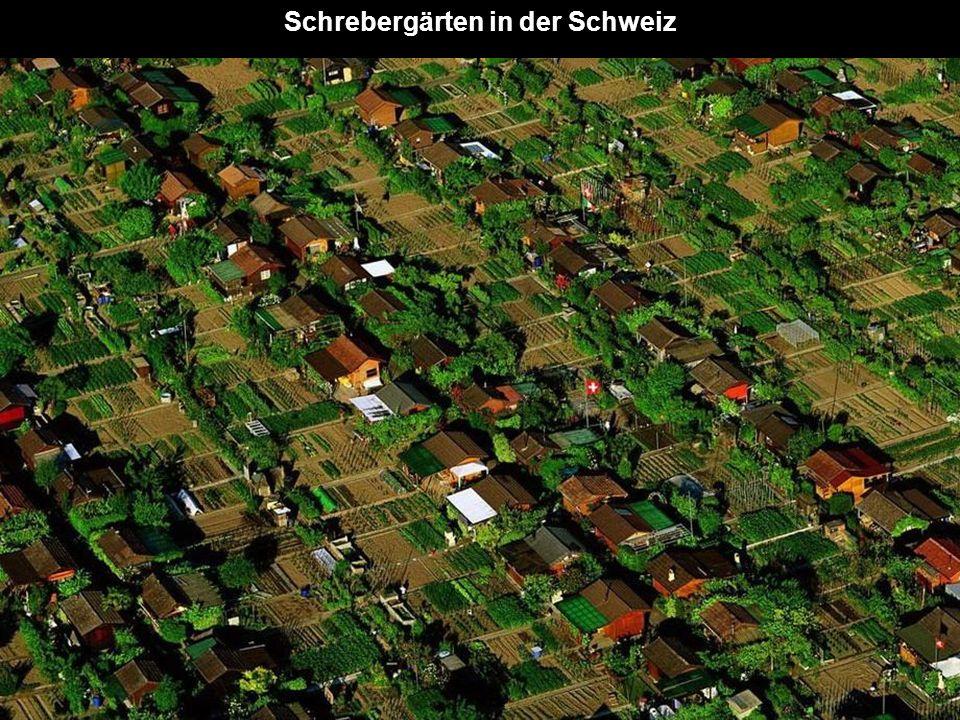 Schrebergärten in der Schweiz