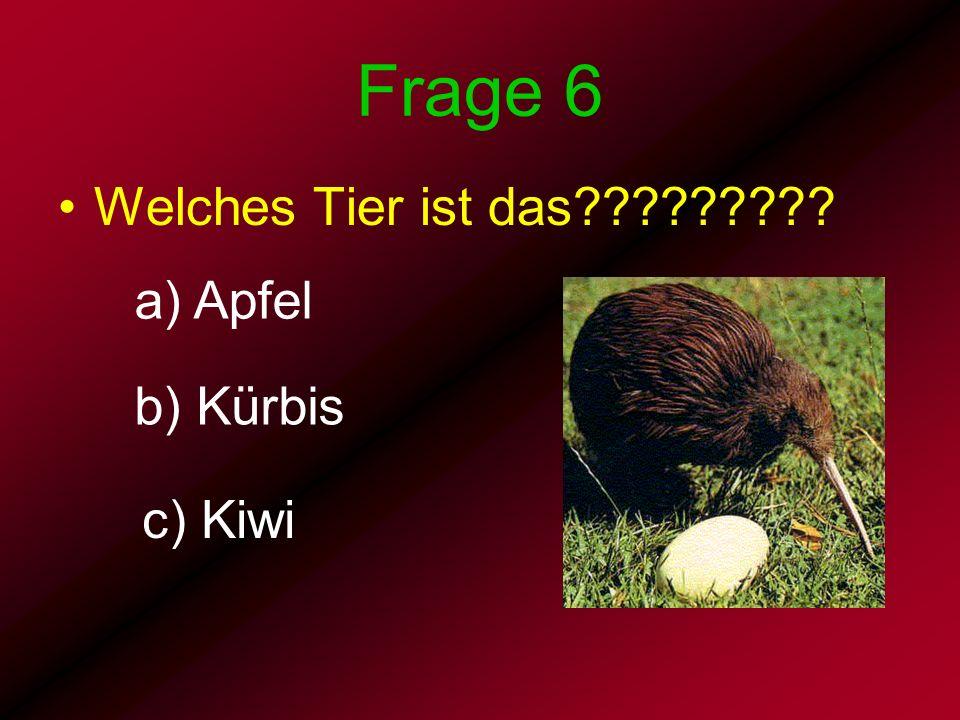 Frage 6 Welches Tier ist das a) Apfel b) Kürbis c) Kiwi