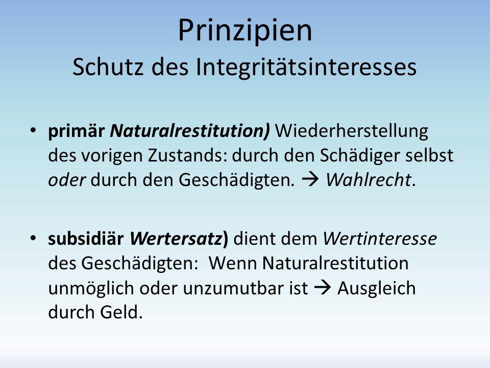 Prinzipien Schutz des Integritätsinteresses