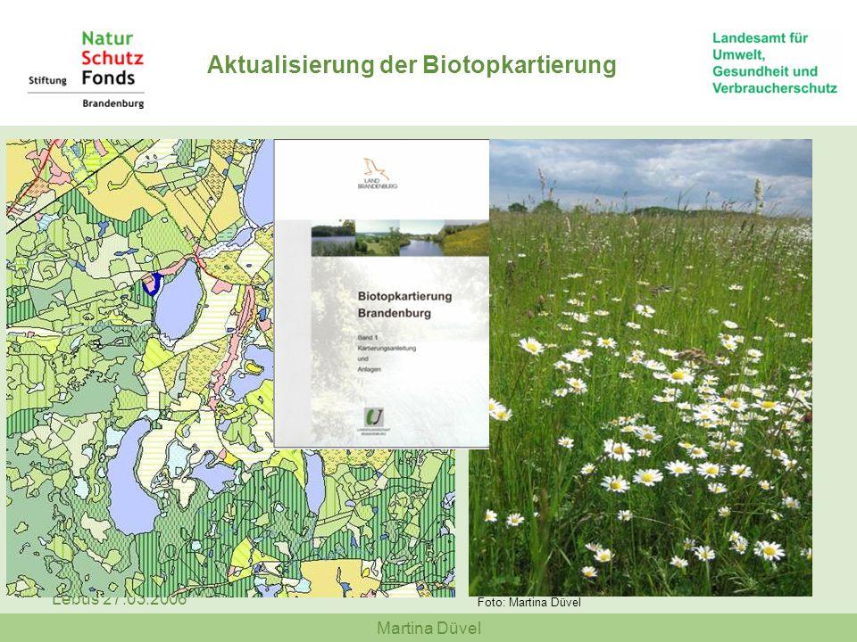 Aktualisierung der Biotopkartierung
