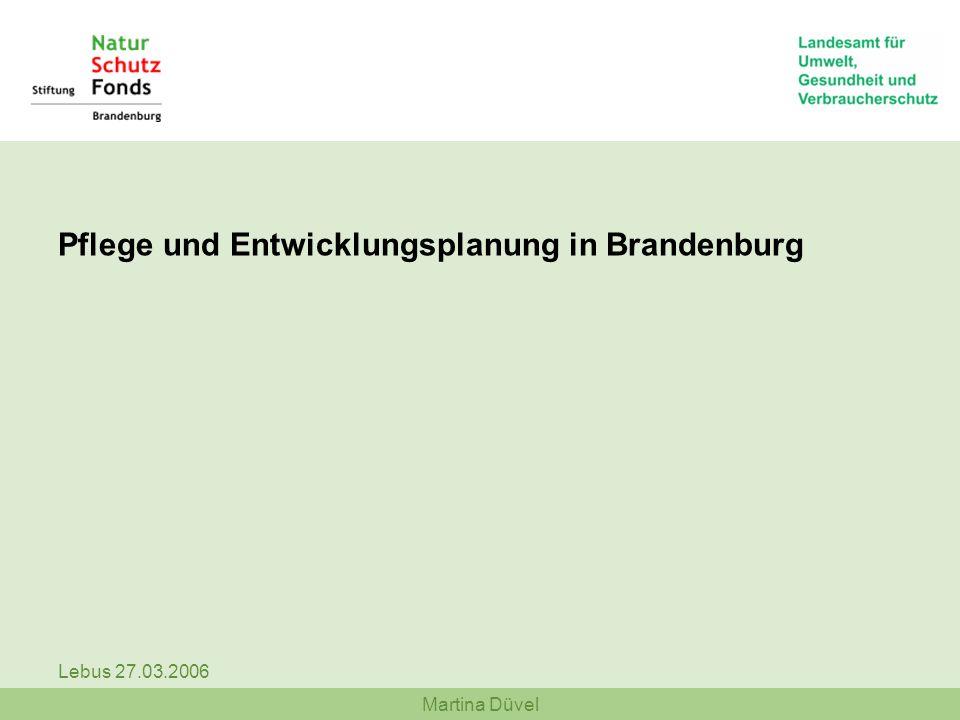 Pflege und Entwicklungsplanung in Brandenburg