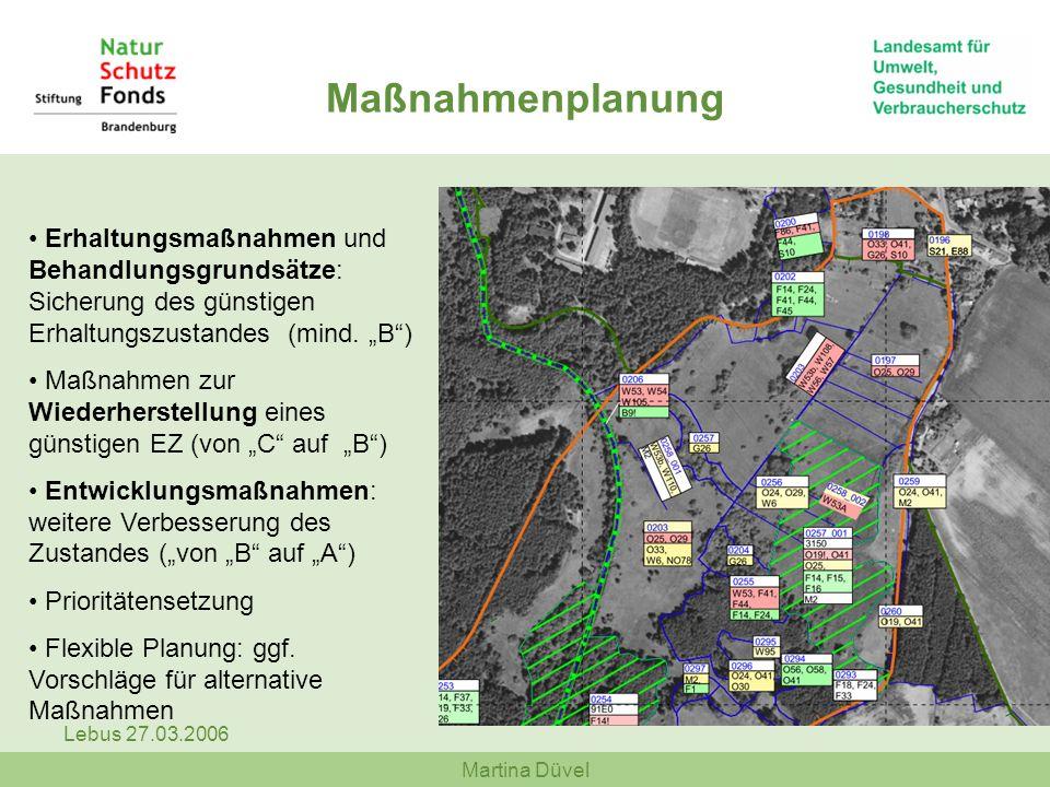 """Maßnahmenplanung Erhaltungsmaßnahmen und Behandlungsgrundsätze: Sicherung des günstigen Erhaltungszustandes (mind. """"B )"""