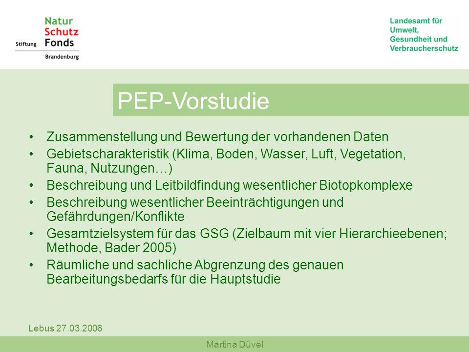 PEP-Vorstudie Zusammenstellung und Bewertung der vorhandenen Daten