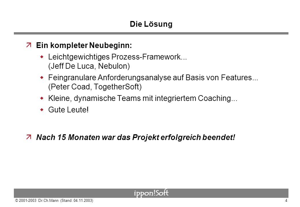 Die Lösung Ein kompleter Neubeginn: Leichtgewichtiges Prozess-Framework... (Jeff De Luca, Nebulon)