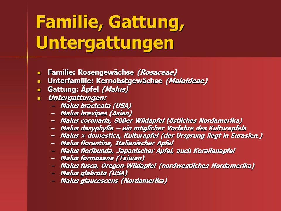 Familie, Gattung, Untergattungen