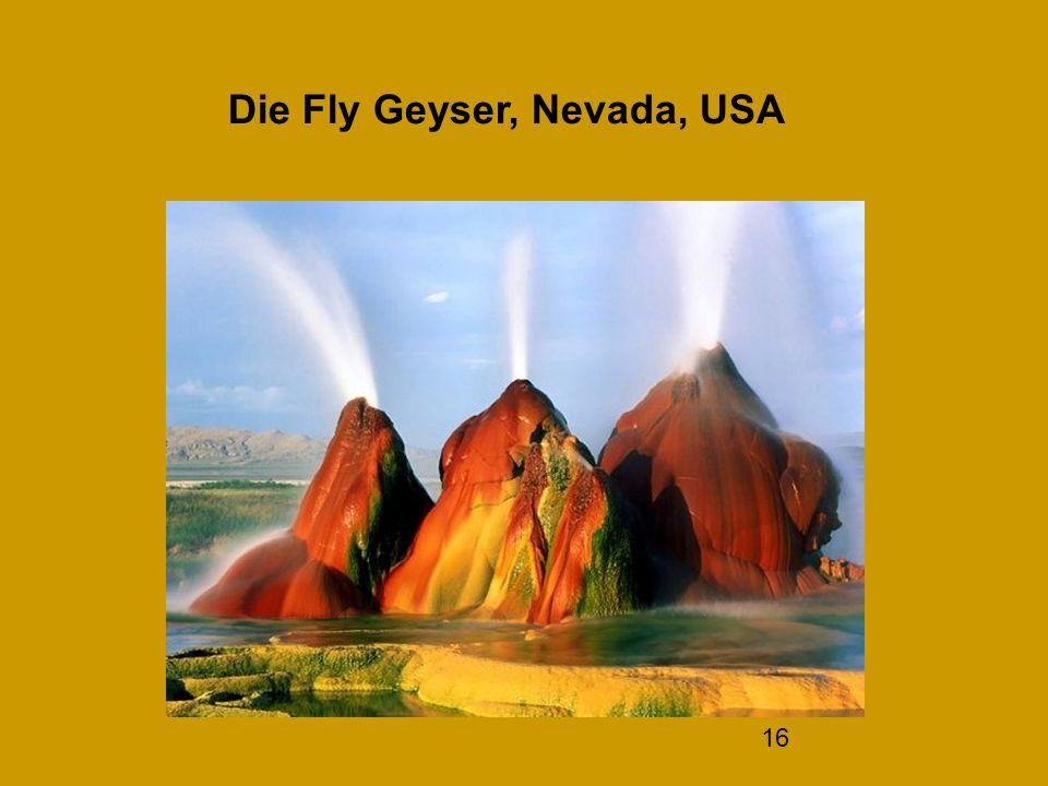 Die Fly Geyser, Nevada, USA