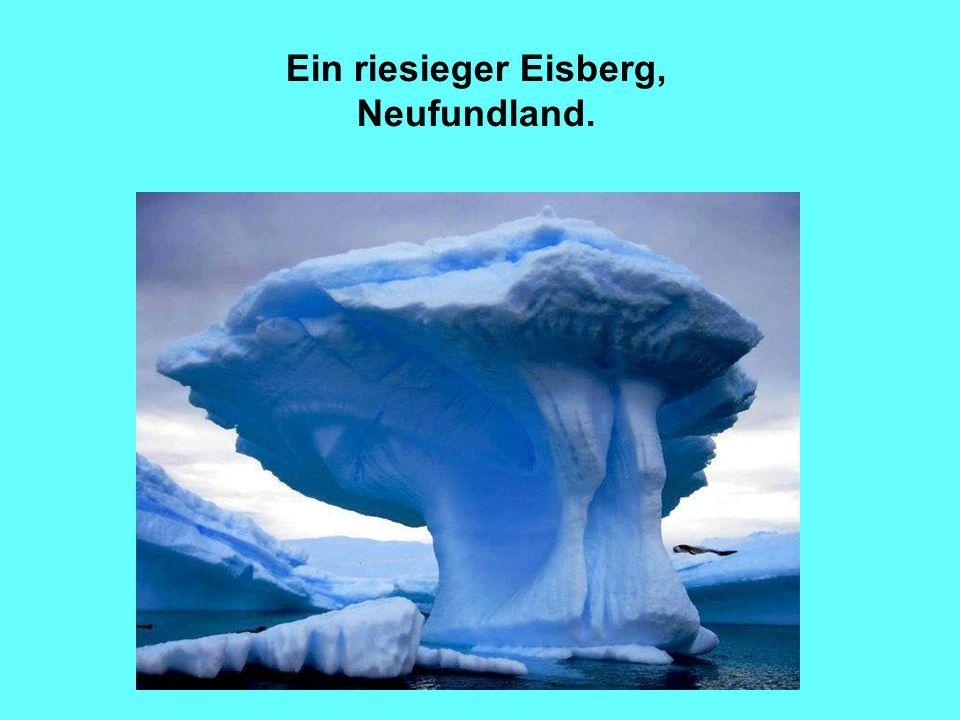 Ein riesieger Eisberg, Neufundland.