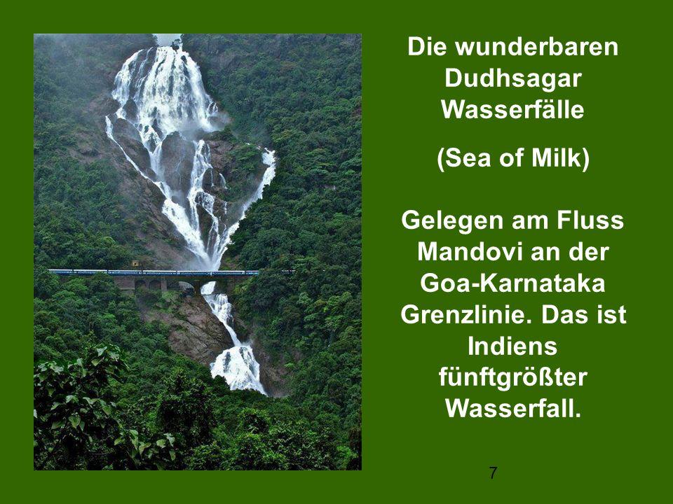 Die wunderbaren Dudhsagar Wasserfälle