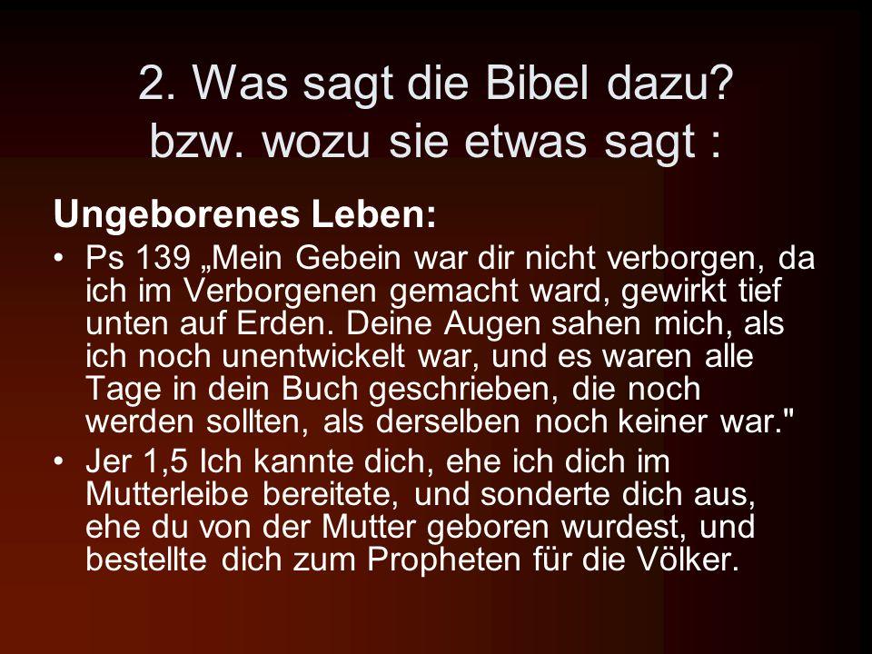 2. Was sagt die Bibel dazu bzw. wozu sie etwas sagt :