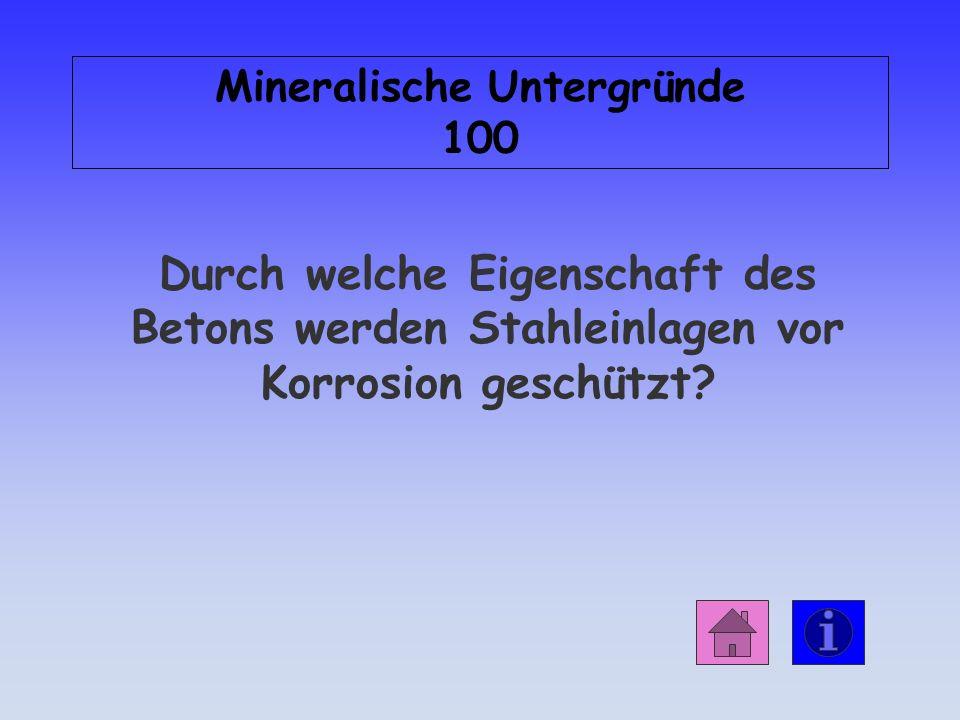 Mineralische Untergründe 100