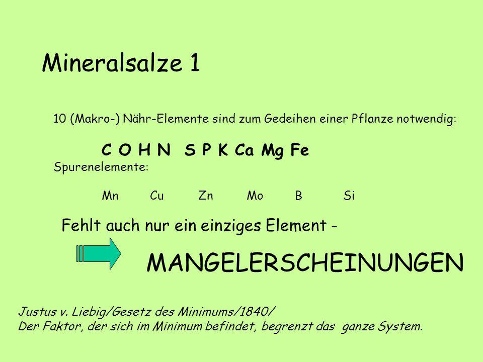 Mineralsalze 1 MANGELERSCHEINUNGEN
