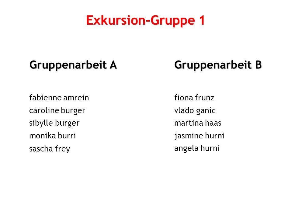 Exkursion-Gruppe 1 Gruppenarbeit A Gruppenarbeit B fabienne amrein