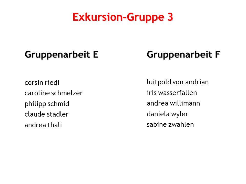 Exkursion-Gruppe 3 Gruppenarbeit E Gruppenarbeit F corsin riedi