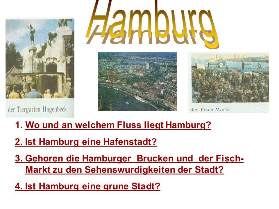 Hamburg Wo und an welchem Fluss liegt Hamburg