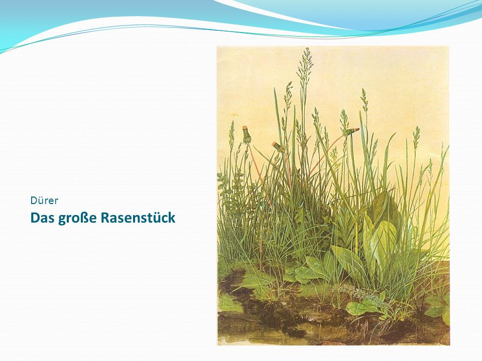 Dürer Das große Rasenstück