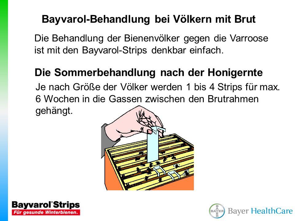 Bayvarol-Behandlung bei Völkern mit Brut
