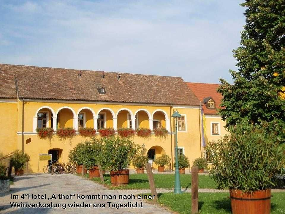 """Im 4*Hotel """"Althof kommt man nach einer Weinverkostung wieder ans Tageslicht"""