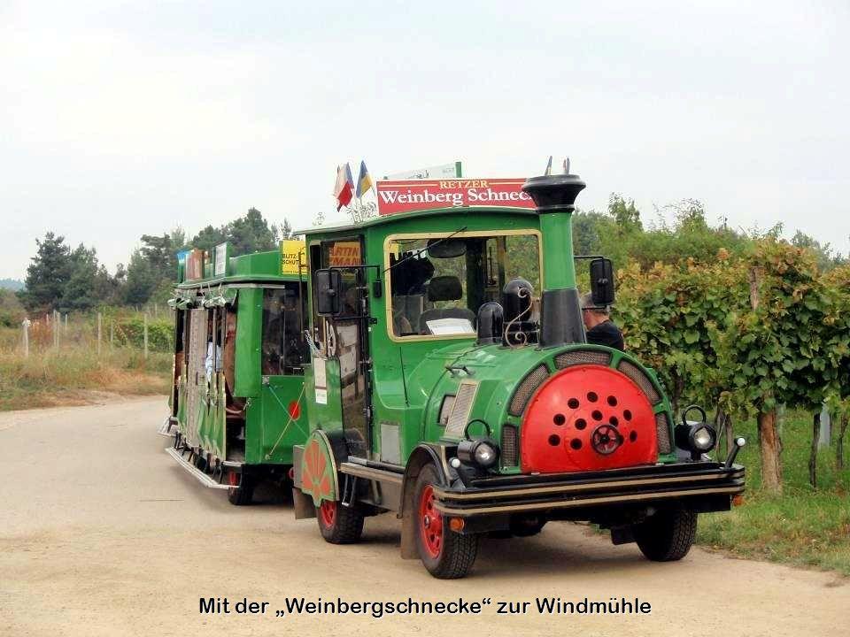 """Mit der """"Weinbergschnecke zur Windmühle"""
