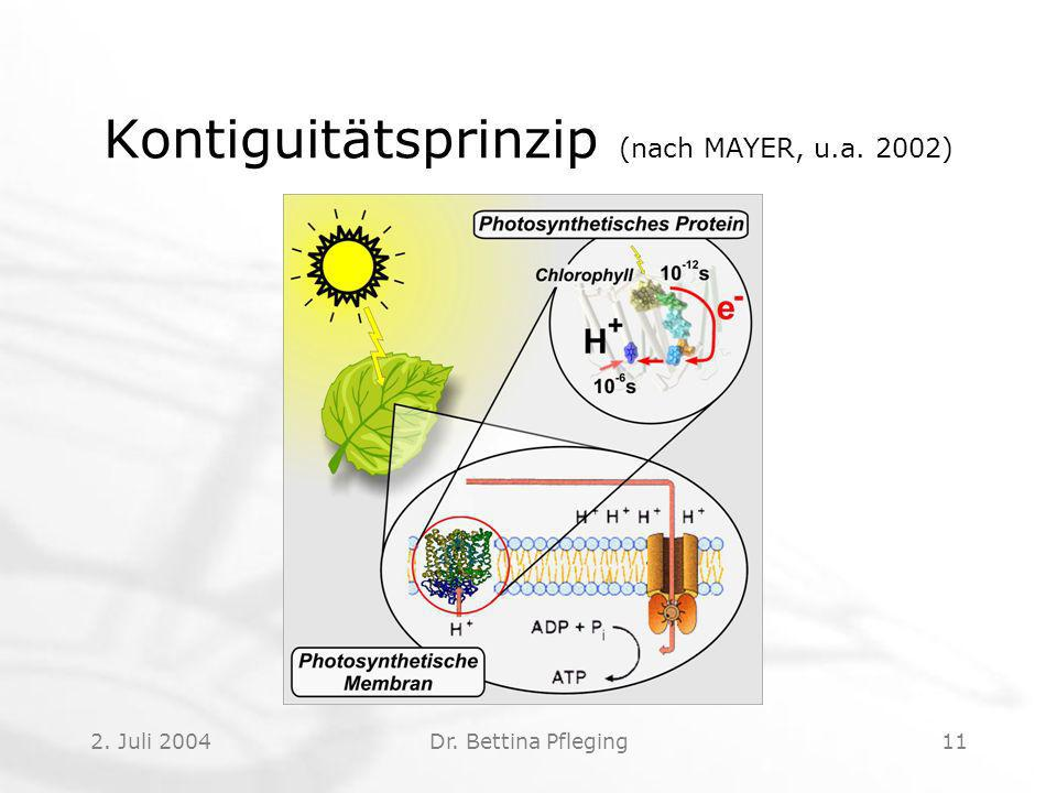 Kontiguitätsprinzip (nach MAYER, u.a. 2002)