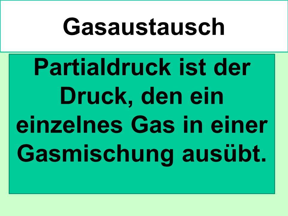 Gasaustausch Partialdruck ist der Druck, den ein einzelnes Gas in einer Gasmischung ausübt.