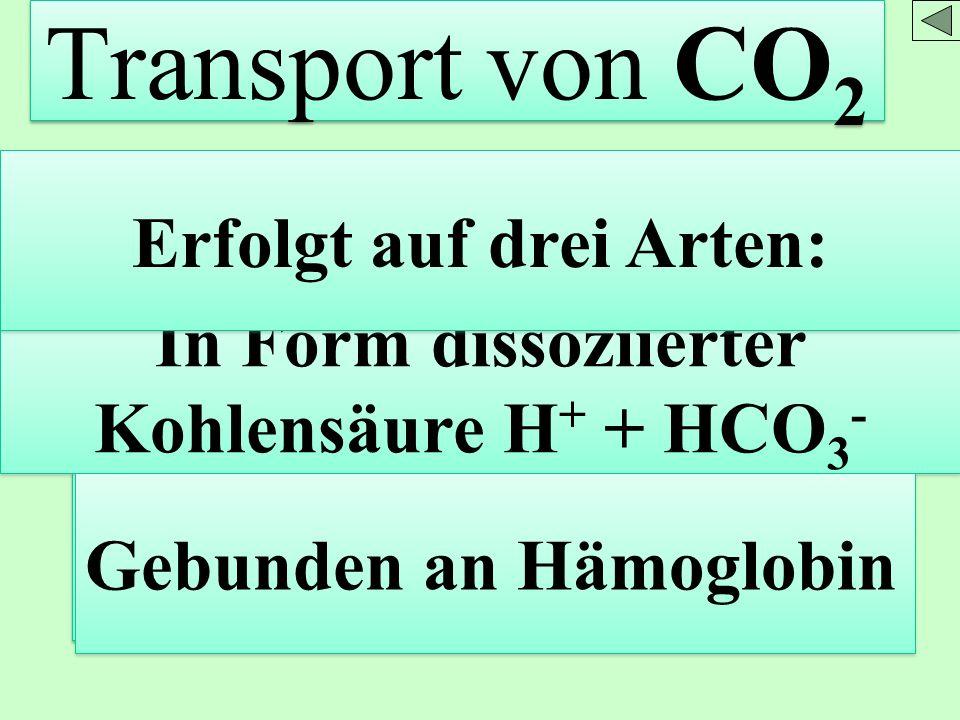 Erfolgt auf drei Arten: In Form dissoziierter Kohlensäure H+ + HCO3-