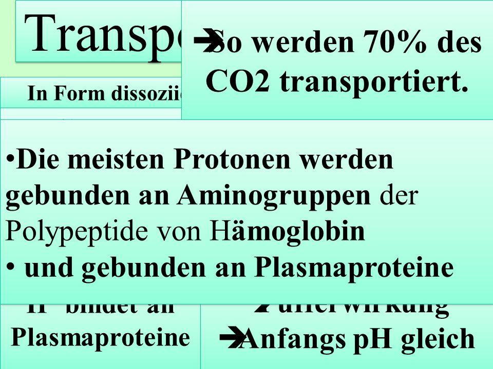 Transport von CO2 So werden 70% des CO2 transportiert.